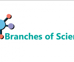 Branches Of  Science - Part 1