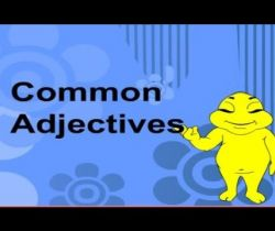 Adjectives 1: Common