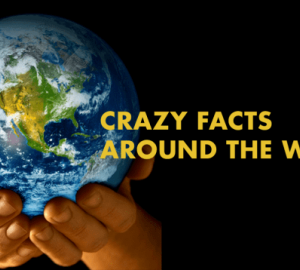 Crazy Facts Of The World