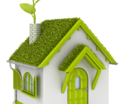 Eco-friendly homes