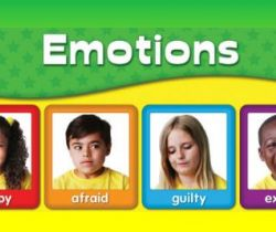 Emotions (Feelings)