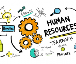 How Human Resources Work In Your Organization