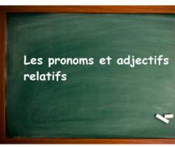 Relative pronouns and adjectives