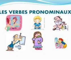 The pronominal verbs