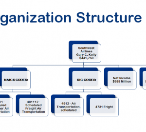 Organisational Structures and Common Job Titles