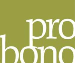 Pro bono-not just for lawyers