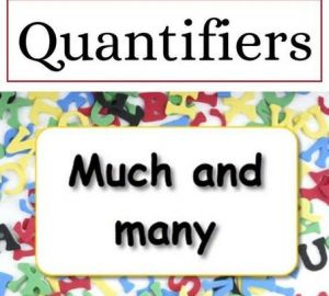 Quantifier: How much & How many