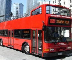 Red bus (Gender and number of nouns)