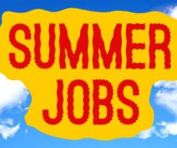 Summer Time (Types of jobs during summer vacations - Part/Full-time, Internship, assistant, etc.)