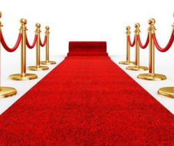 The Red Carpet - A Glimpse of International Film Awards