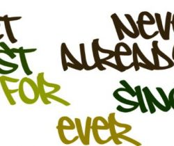 Usage of 'never', 'already', 'however', 'since' & 'for'
