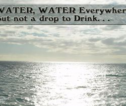 Water,Water Everywhere And Not A Drop To Drink